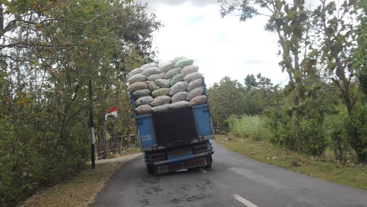 Ratusan ribu ton panenan ketela petani Gunungkidul, sebagian besar masih dijual dalam bentuk gaplek. KH/ Kandar