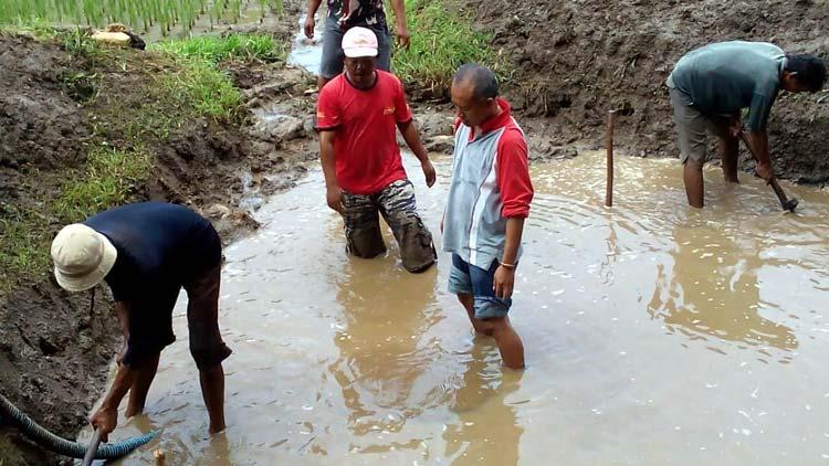 Sumber air di Karangmojo yang ditemukan warga memiliki debit yang besar. KH