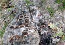 Watu Dakon, Cerita Tempat Main Rara Lembayung Hingga Tetes Air Mata Ki Ageng Giring