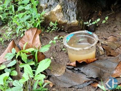 Sanitasi Kotor Rentan Sarang Nyamuk. Foto: Maryanto.