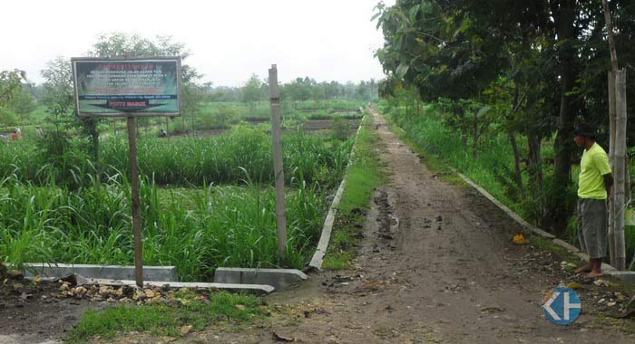 Jalan Tol Ke Ladang di Desa Playen. Foto: Sarwo.