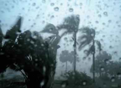 Ilustrasi Foto : Antaranews.com