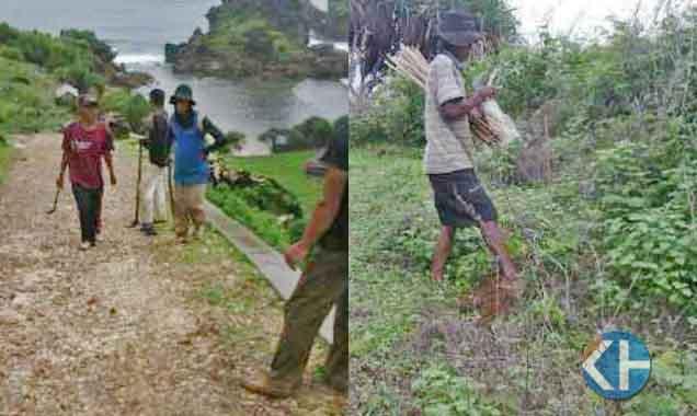 Penanaman Tanaman . Foto : Jhody