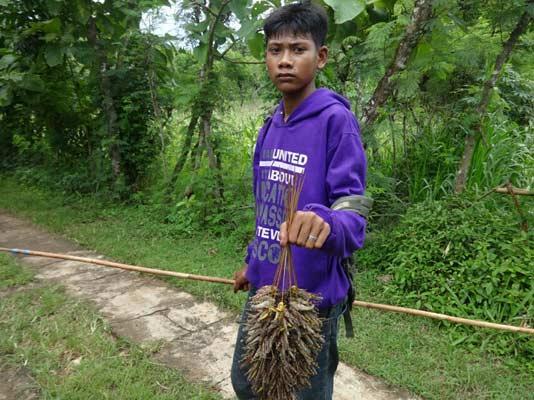 Pencari belalang di Desa Banjarejo Tanjungsari.