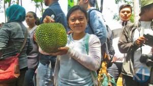 Durian seharga Rp.450 Ribu. Foto : Atmaja