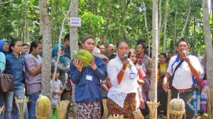 Suasana Festival Durian. Foto : Atmaja