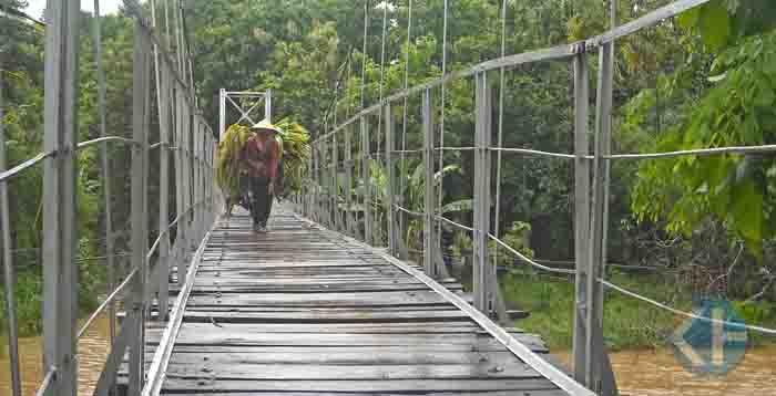 Petani yang sedang menyeberang. Foto : Edo