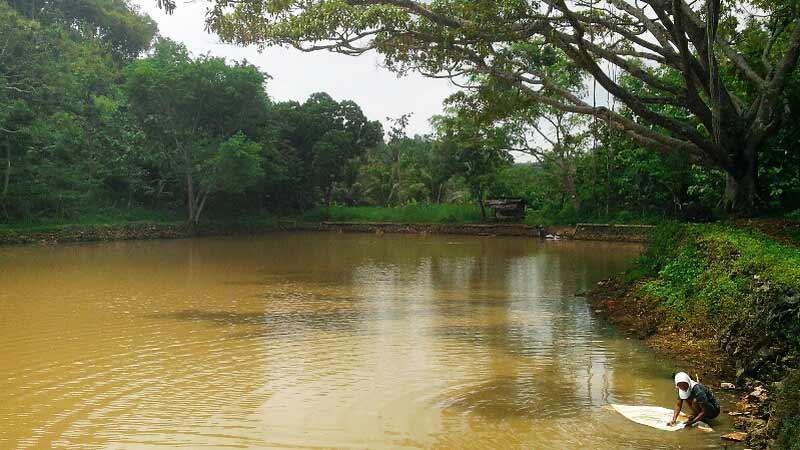 Telaga Kepuh di Dusun Pengos Desa Giring Paliyan. Foto: Atmaja.