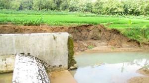 Dam yang berada di Padukuhan Pangkah, Semin, Ambrol. KH/Juju