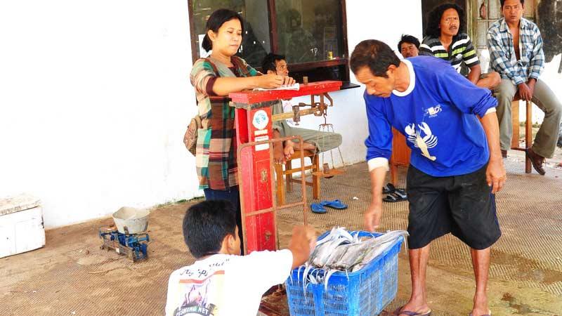 Ikan hasil tangkapan nelayan Gunungkidul. Dok; KH.