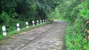 Jalan Penghubung Banyusoca-Dlingo