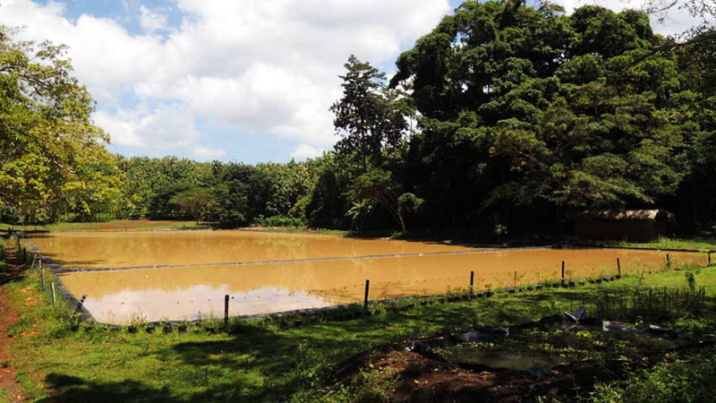 Telaga Motoendro di Desa Girisekar Panggang. Foto: Kandar.