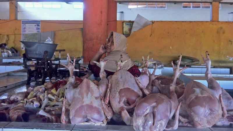 Pedagang ayam potong pasar Argosari. Foto : KH/Dwianjani