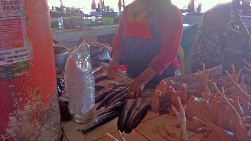 Ikan lele yang dijual. Foto : KH/Dwianjani