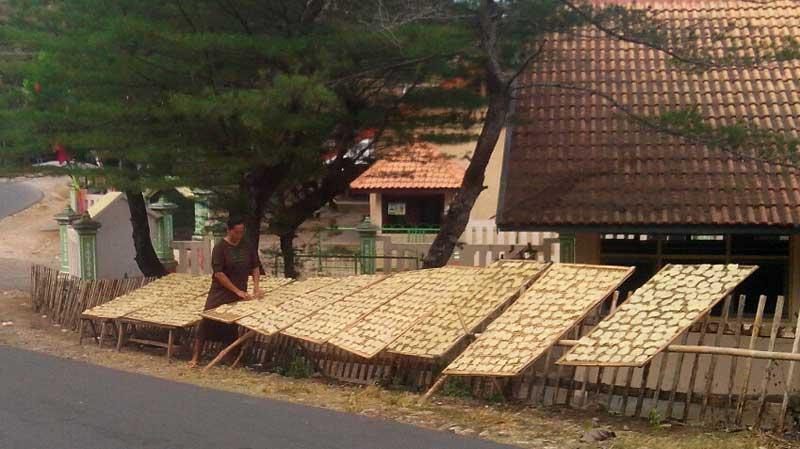 Tupon warga Sidoharjo Tepus sedang menjemur produk lempeng dan pathilo. KH/Atmaja.