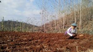 Petani Zona Selatan Gunungkidul mempersiapkan lahan. Dok. KH/Kandar