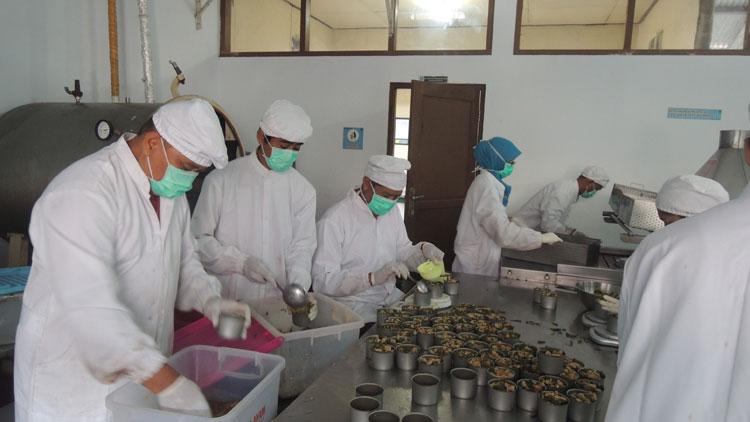 Proses Pengalengan Sayur Lombok Ijo, di LIPI Gading. KH/ Kandar