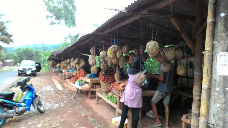 Pedagang buah durian marak. KH/ Edo.