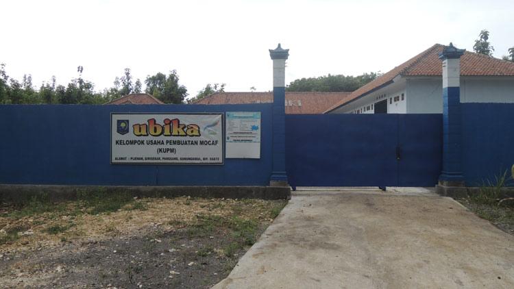 Pabrik Mocaf Panggang kesulitan bahan baku. KH/ Kandar