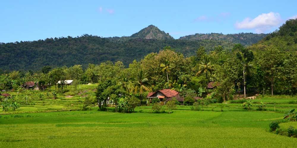 Daerah Subur sekitar DAS Kali Oya, Semin. Photo: WG