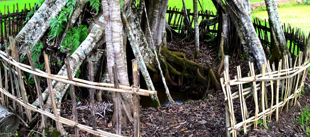 Sumber Air Kehidupan, Ponjong. Photo: WG