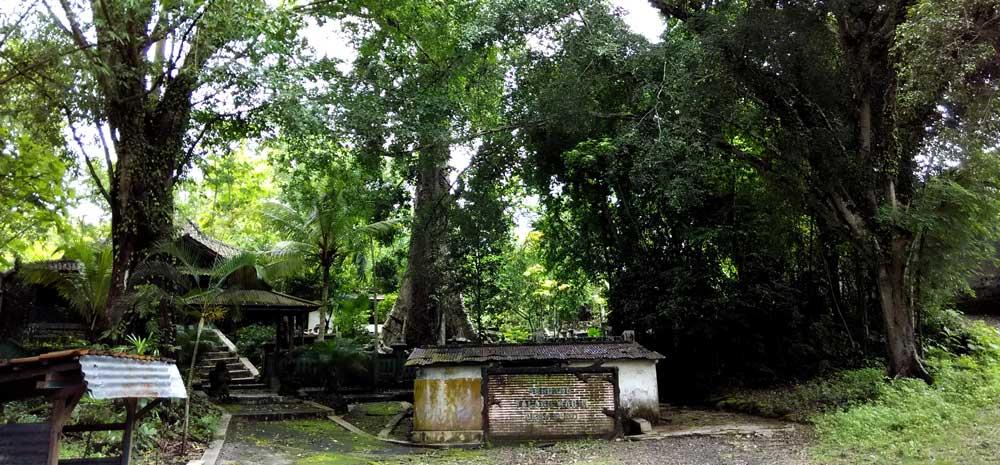 Sendhang Talang Warih; Sada, Paliyan. Photo: WG