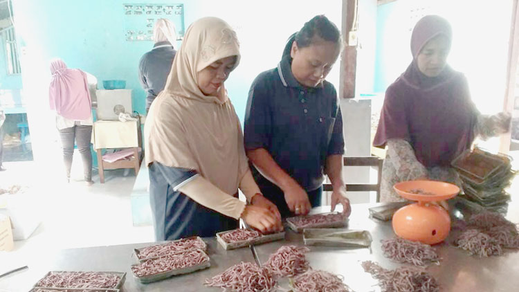 Pelatihan Kelompok Usaha Mekar Sari Padukuhan Kulwo, Desa Bejiharjo, Karangmojo. Yolanda.