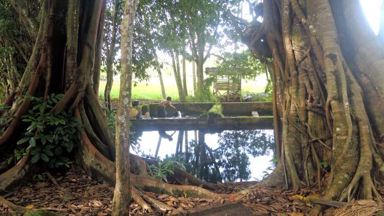Situs pemandian kuno di Pongangan, salah satu tempat ketika masa hidup Ki Suromejo. KH/ Kandar