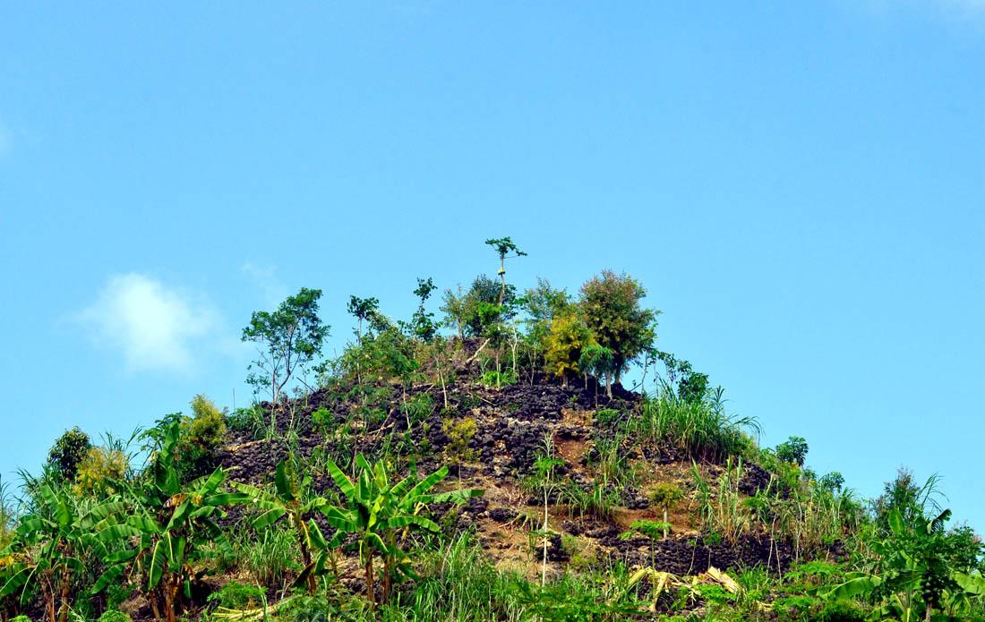 Lahan pertanian kering di wilayah Panggang. Foto:WG