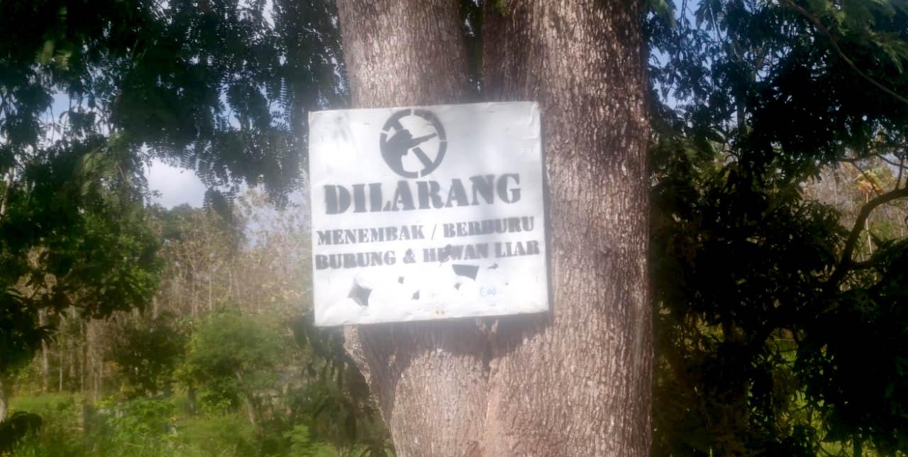 Papan Pengumuman Dilarang Berburu