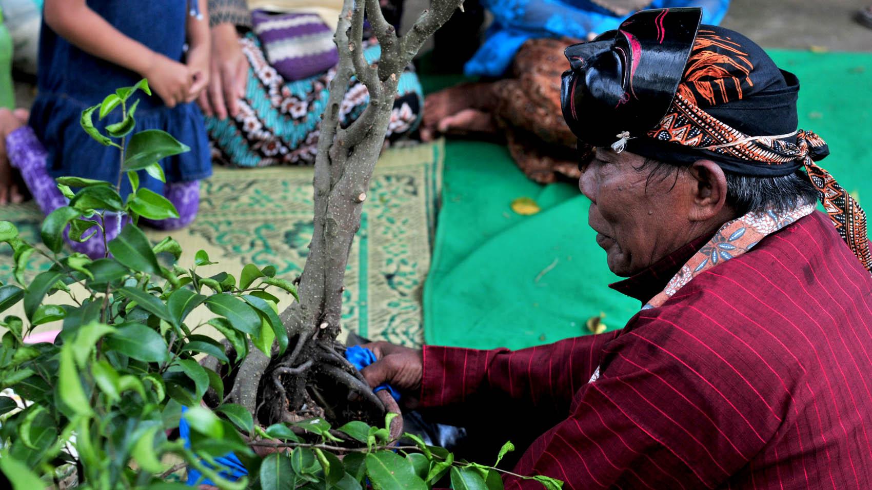 Beles menyerahkan pohon beringin secara simbolik.[Foto:Padmo]