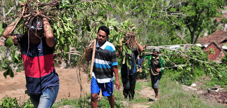 Karang Taruna Pringombo sedang berjalan naik ke Gunung Semilir dengan membawa beringin untuk penanaman.[Foto:Padmo]